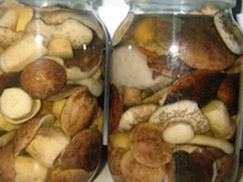 Маринованные подберезовики рецепты приготовления